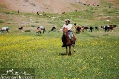 Talesh-Gilan-Iran-1184-11